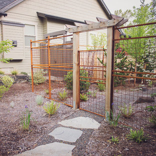 This is an example of a mid-sized traditional partial sun backyard gravel garden path in Other for spring.