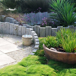 Design ideas for a contemporary backyard landscaping in Wellington.