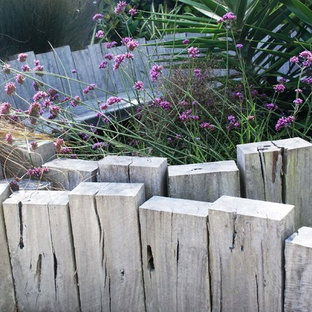 Design ideas for an eclectic landscaping in Wellington.