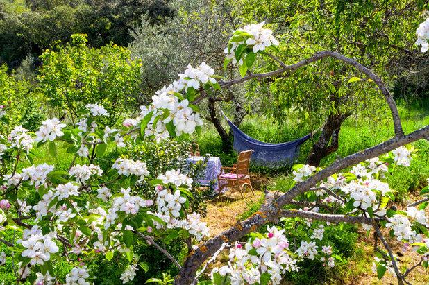 Mediterran Garten by ESPACIOS Y LUZ FOTOGRAFÍA