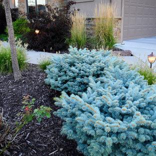 オマハの中サイズのラスティックスタイルのおしゃれな前庭 (半日向、コンクリート敷き) の写真