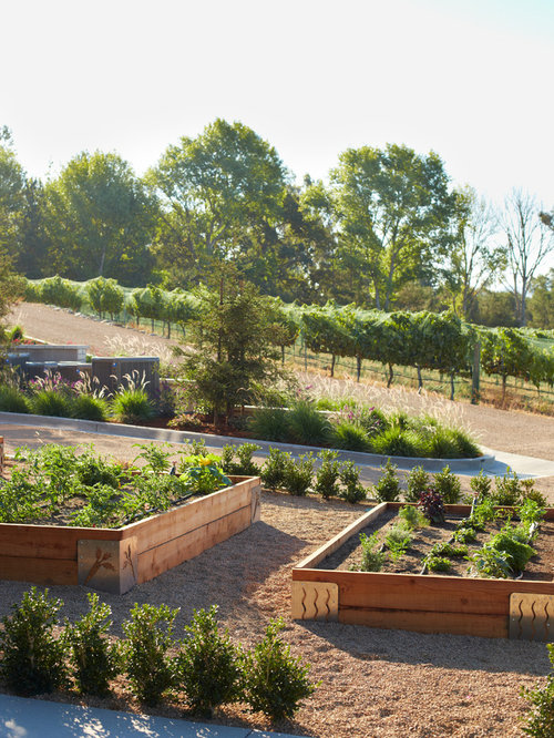 Design Ideas For A Rustic Vegetable Garden Landscape In Santa Barbara.