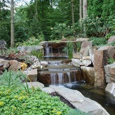 Asian Landscape by Cipriano Landscape Design & Custom Swimming Pools