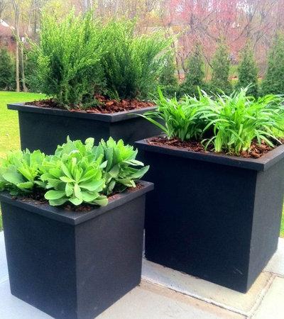 Contemporary Garden by Samarotto Design Group