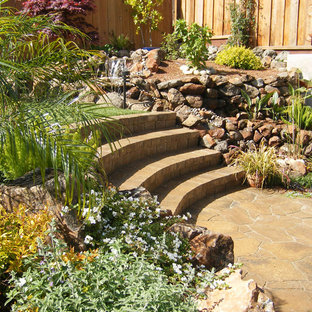 Inspiration for a tropical retaining wall landscape in San Francisco.