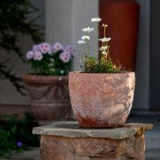 Mediterranean Landscape by SP Gardens - Susanna Pagan Landscape Design