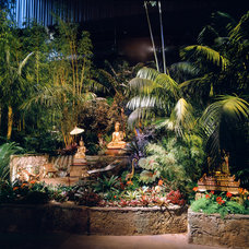 Asian Landscape by Golden Gate Palms and Exotics