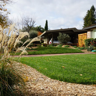 This is an example of a mid-sized farmhouse full sun and drought-tolerant front yard gravel landscaping in San Francisco.