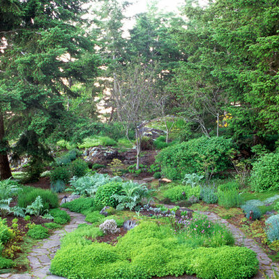 Design ideas for a traditional backyard landscaping in Seattle.