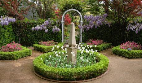 Сад: 9 элементов, чтобы любоваться ими круглый год