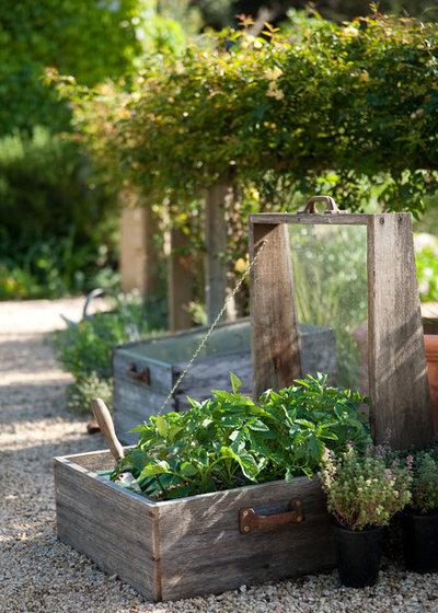Nella scarpa o nella vecchia valigia 12 idee per giardini - Giardino in miniatura ...