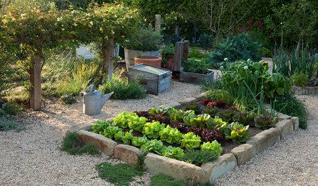 What's Growing in Your Edible Garden?