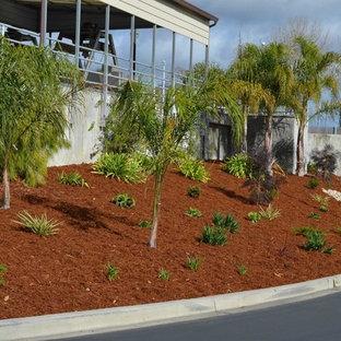 Inspiration för stora exotiska trädgårdar i delvis sol som tål torka och i slänt, med en trädgårdsgång och naturstensplattor