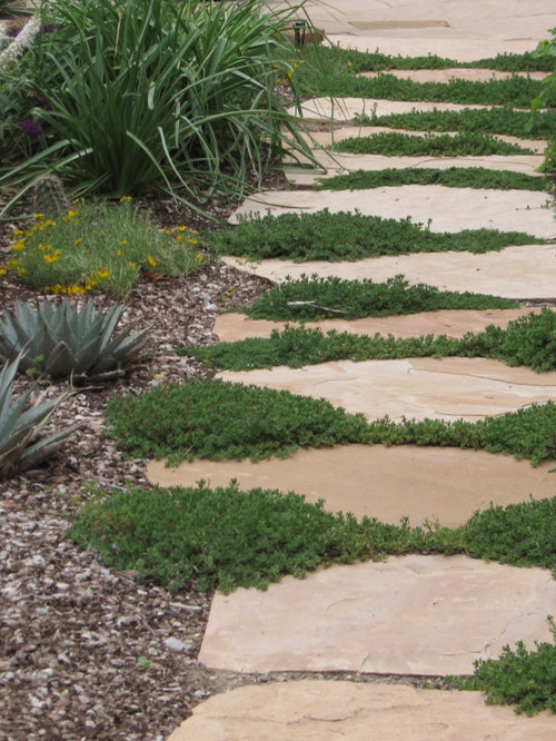 Landscaping Rock Albuquerque : Albuquerque landscape ideas designs remodels photos