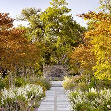 Trädgård: Inspireras av starka höstfärger
