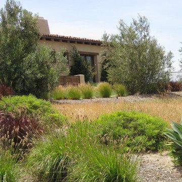 Santa Luz California Ranch