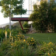 Contemporary Landscape by Design Focus Int'l Landscape Architecture & Build