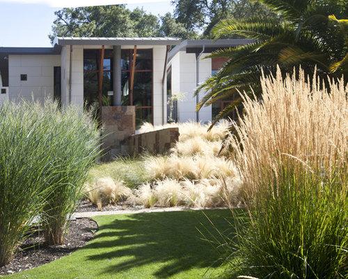 Ornamental grass houzz for Ornamental grass ideas