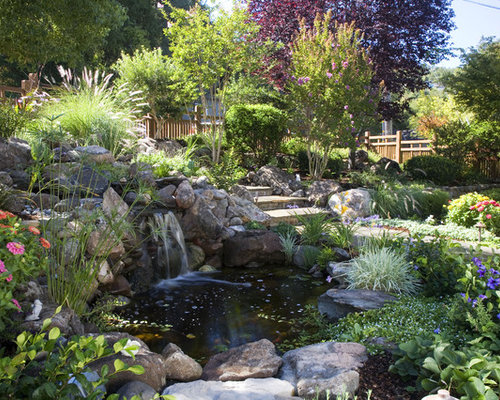 Plants around ponds home design ideas renovations photos for Plants around ponds