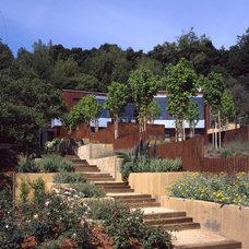 Contemporary Landscape by Conrado - Home Builders