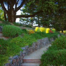 Traditional Landscape by Kikuchi + Kankel Design Group