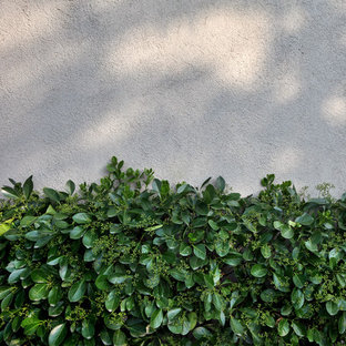 Photo of a contemporary landscaping in New York.