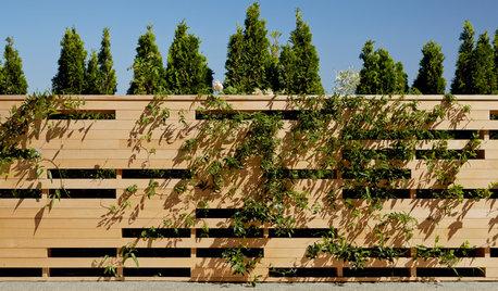 10 Fresh Designs for Eye-Catching Wood Fences