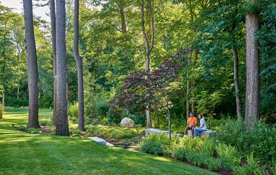 Backyard of the Week: Woodland Garden With Scandinavian Roots