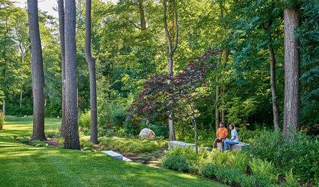 Backyard of the Week: Woodland Garden With Scandinavian Roots