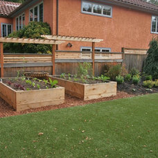 Transitional Landscape by Creative Garden Spaces