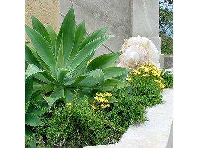 Contemporary Garden by Zeterre Landscape Architecture