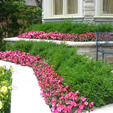 Traditional Landscape by Piques And Valleys Gardening