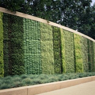 Idee per un giardino contemporaneo