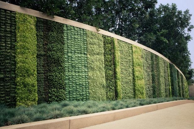Giardini Verticali: Come Sceglierli e Mantenerli Belli