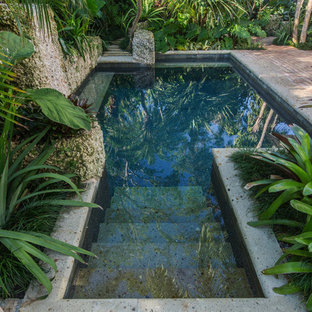75 Most Popular Tropical Landscaping Design Ideas For 2018
