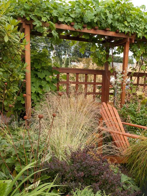 Grape Arbor Designs Home Design Ideas, Pictures, Remodel ...