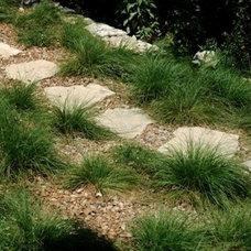 Modern Landscape by J. Peterson Garden Design