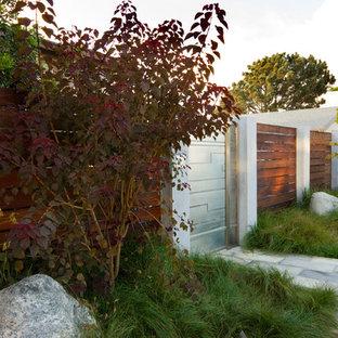 Diseño de jardín minimalista en patio delantero