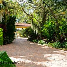Tropical Landscape by Bell Landscape Architecture Inc.