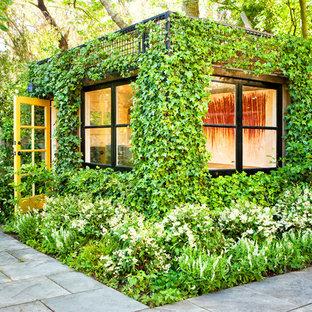 Inspiration för klassiska trädgårdar, med en vertikal trädgård