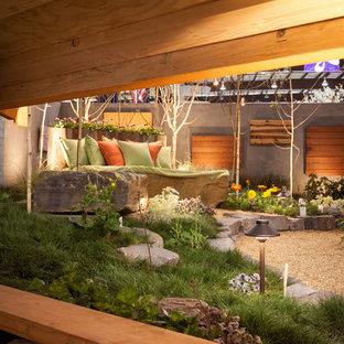 Cette photo montre un jardin scandinave.