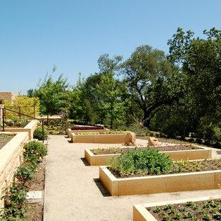На фото: солнечный огород на участке в средиземноморском стиле с освещенностью с