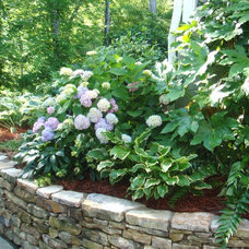 Traditional Landscape Shade Garden in raised bed with stone wall