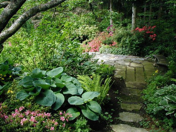 Contemporary Garden by Bear Creek Landscaping , LLC
