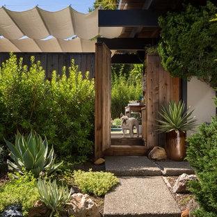 Mittelgroßer, Geometrischer Mid-Century Vorgarten mit Natursteinplatten in San Francisco