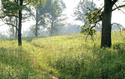 5 Easy Ways to Break Free of a Gardening Rut