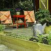 Rädda din trädgård – så vattnar du bäst i sommar