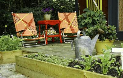 Førstehjælp til dine planter: Undgå, at de dør af tørst i varmen