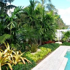 Tropical Landscape by Showcase Gardens
