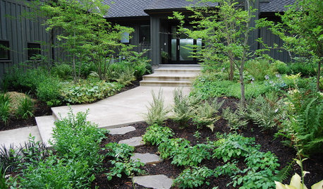 6 Ways You Can Save on Your Garden Renovation